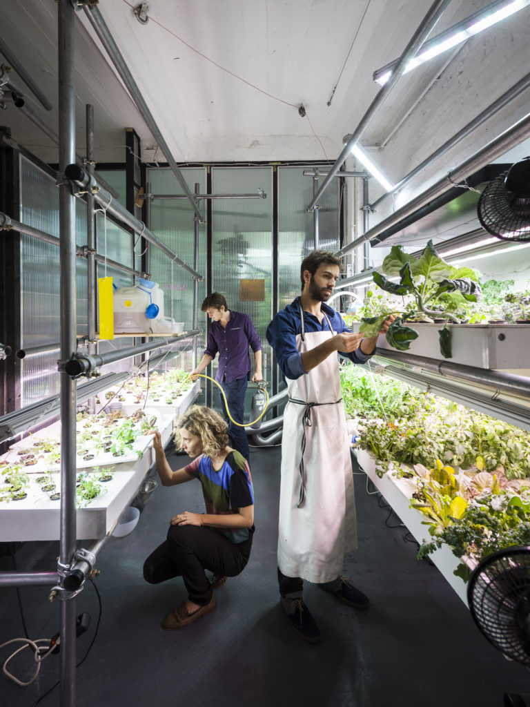Growing plants at Infarm, an indoor farm in Berlin, Germany